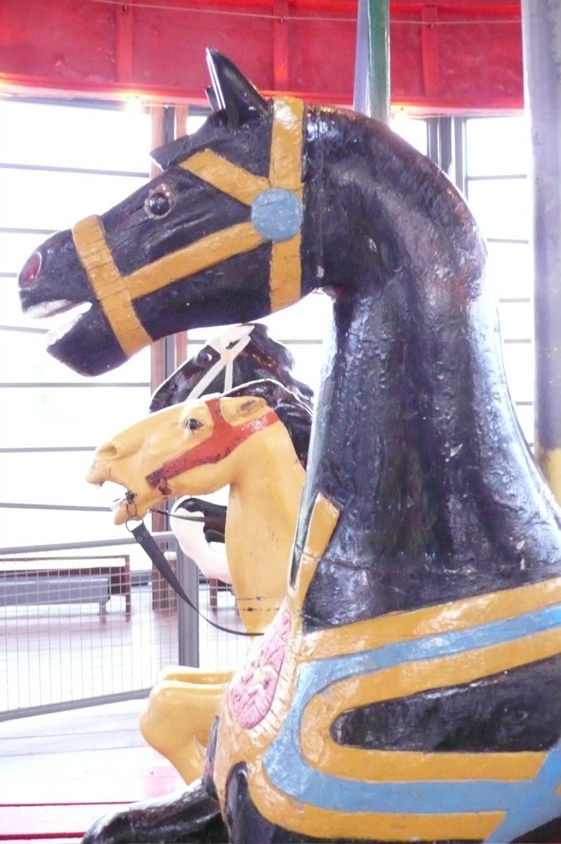 Charles dare horse greenport