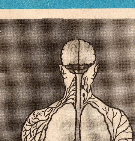 The human body cover009_2