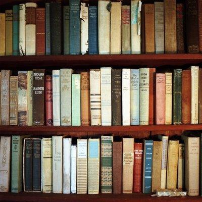 Aline smithson bookshelf