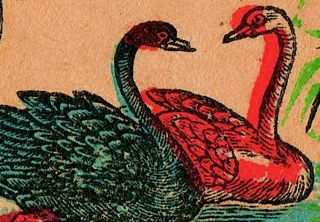 swan, red swan, blue swan, Safety match, japan graphic