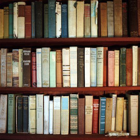 Aline Smithson, old books on shelf, herman hesse,
