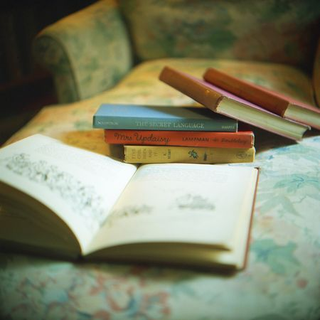 Aline Smithson, books, book on chair, children's books, The Secret Language