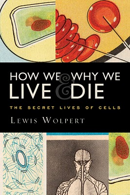 Ian Shimkoviak, The boodesigners, How wel live and why we die, book cover design, the human body details, cell illustration