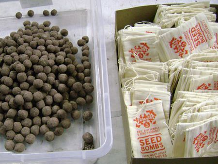 Seed bombs, visualingual, production, wildflower, random acts of gardening