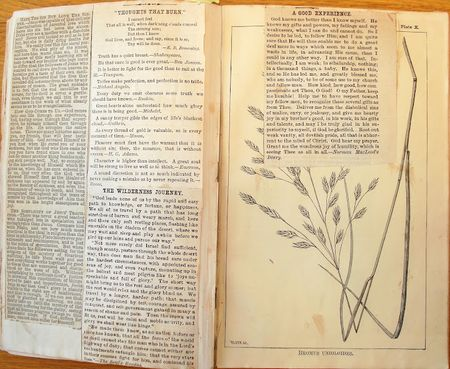 1878 agricultural reports repurposed as scrapbook. Collection of Ellen Gruber Garvey