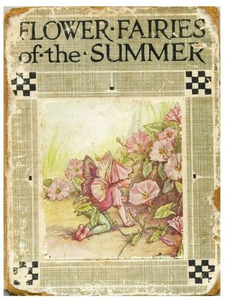 Flower fairies of summer