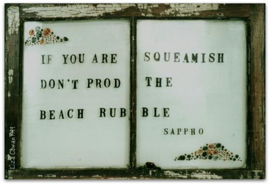 If you are squamish don't prod the beach rubble sappy text on old window Liza Cowan 1994