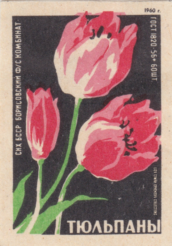 RUSSIAN botanical match box label. tulip LIZA COWAN EPHEMERS COLLECTIONS