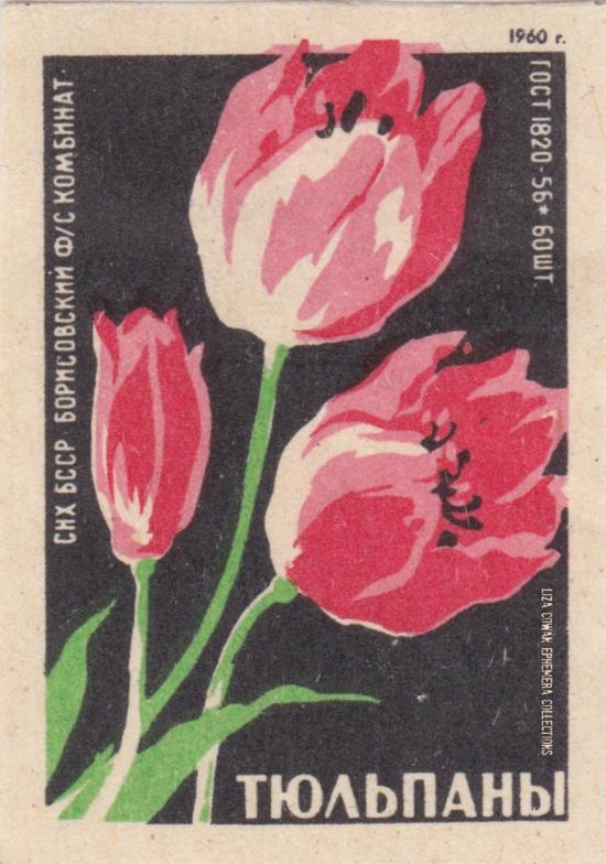 RUSSIAN botanical match box label. tulip LIZA COWAN EPHEMERS COLLECTIONS