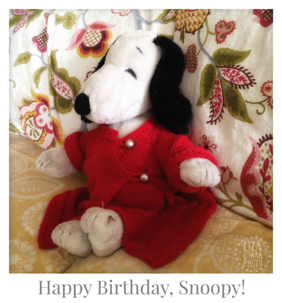 Happy birthday snoopy liza cowan photot