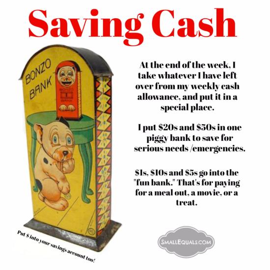 Saving cash, piggy bank, financial literacy, money tips, emergency funds