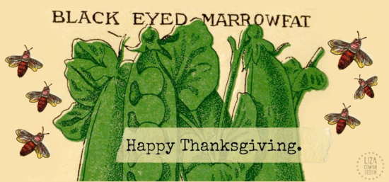 Happy thanksgiving peas and bees Liza Cowan design vintage seed pack peas vintage bee graphic