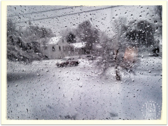Through the rain.snow drops vermont winter dec 10 2014 ©liza cowan