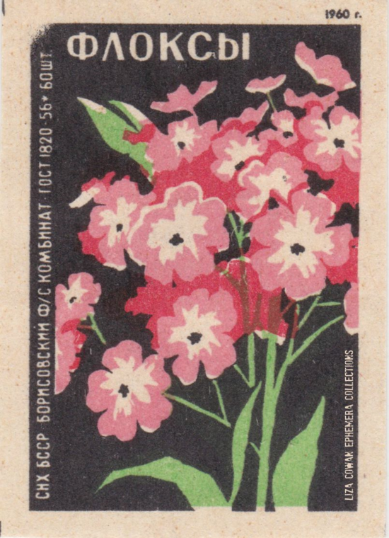 RUSSIAN botanical match box label phlox LIZA COWAN EPHEMERA COLLECTIONS