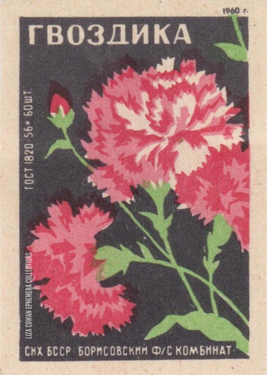 RUSSIAN botanical match box label carnation liza cowan ephemera collections