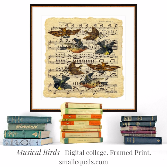 old birds, music score, digital collage, framed print, liza cowan, smallequals.com