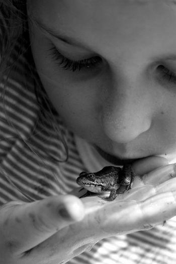 Tiny_frog_blog